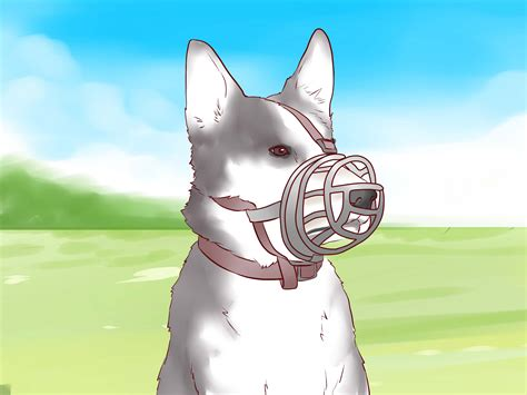 How to Train a Puppy Not to Bite: 9 Steps (with Pictures)