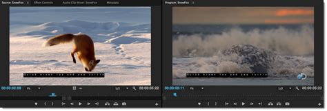 Learn to work with captions in Premiere Pro