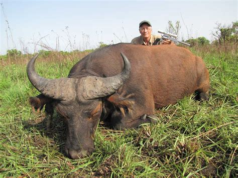 Challenge In Central African Republic | AfricaHunting