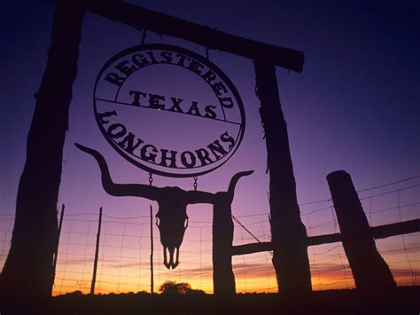 20+ Texas Wallpapers, Backgrounds, Images | FreeCreatives