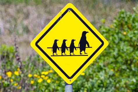 """7 Odd Street Signs Meant to """"Help"""" Travelers – Fodors"""