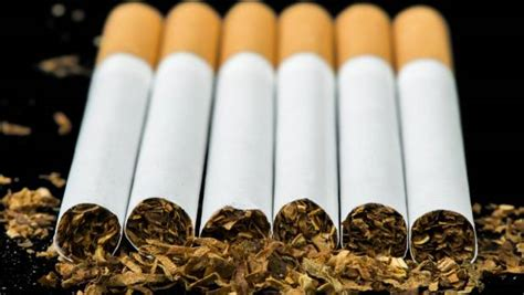 Govt should raise tobacco taxes by up to 50 per cent